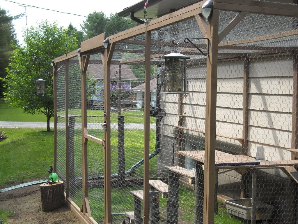 How to build an outdoor cat enclosure or catio for Exterior enclosure